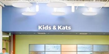 Kids & Kats